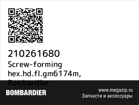 Screw-forming hex.hd.fl.gm6174m, Bombardier 210261680 запчасти oem